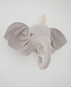 trofæ elefant borAMIRI